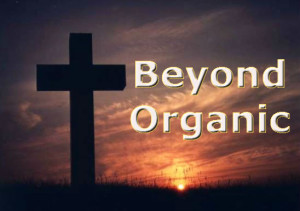 Beyond Organic Review –Is it a Great Business Opportunity?