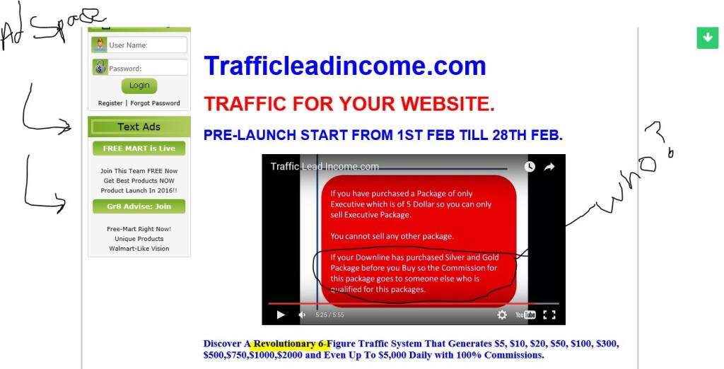 trafficlead income