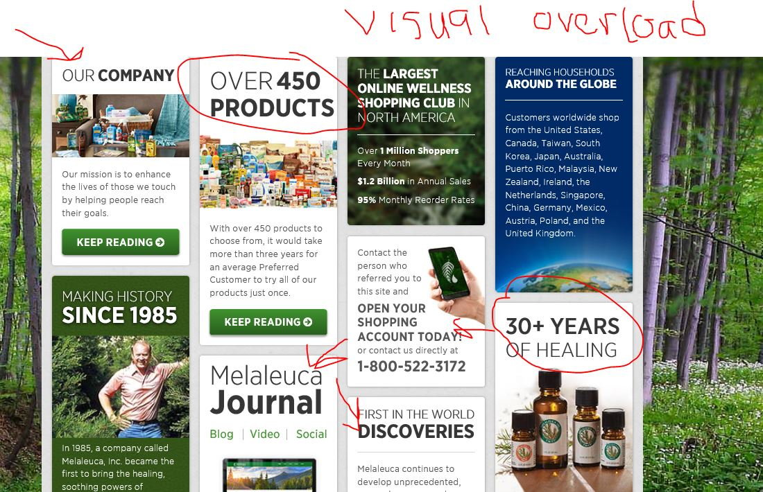 Melaleuca review site