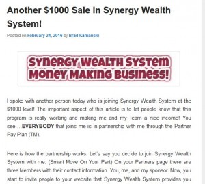 synergy wealth system video